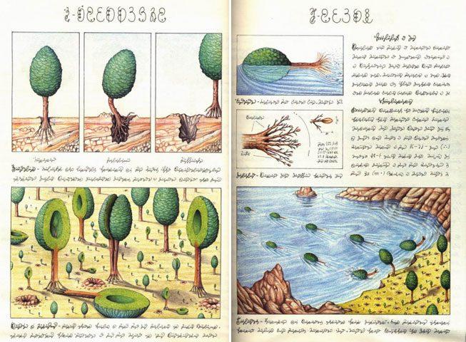 codex seraphinianus 7