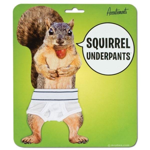 mutande scoiattolo 1